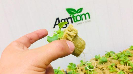 Agritom leafy green machine